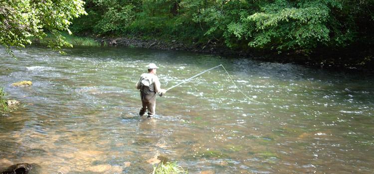Le site le pêcheur la pêche dhiver