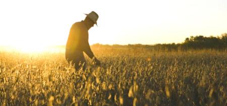vetement travail agriculteur